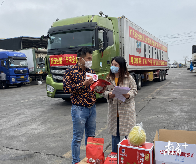 新会陈皮行业协会常务副会长廖长成与南方+、南方农村报记者直播互动