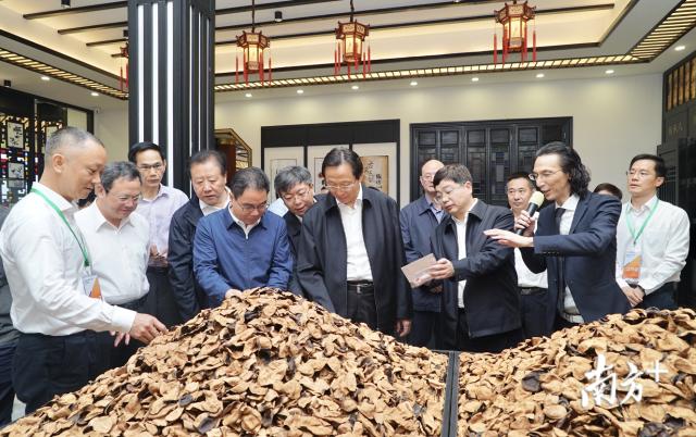 2019年4月20日,农业农村部部长韩长赋一行调研新会陈皮国家现代农业产业园。资料图片